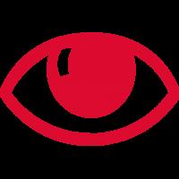 Icon-Auge